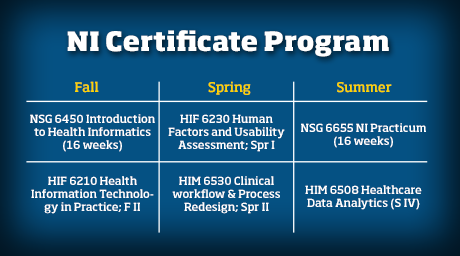 Graphic showing courses taken through the Nuring Informatics Certificate Program