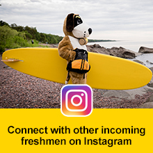 Click here to follow CSS Admissions on Instagram - Photo of St. Scholastica's mascot, Storm on the shore of Lake Superior