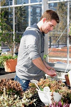 Jane Wattrus manages St. Scholastica's greenhouse