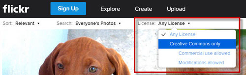 License filtering using Flickr search