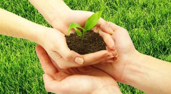 Practice Sustainability